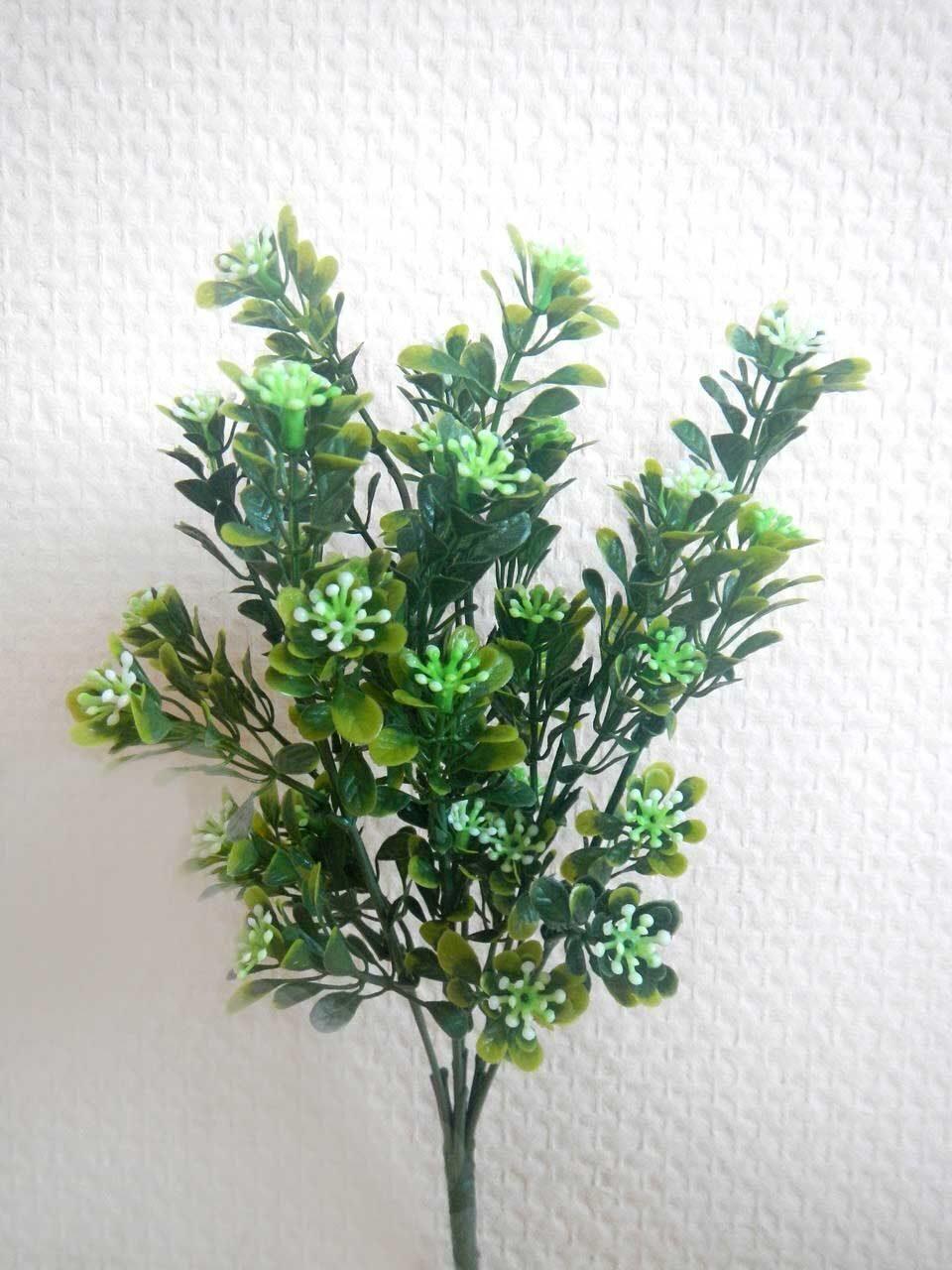 зелень для букетов названия и фото
